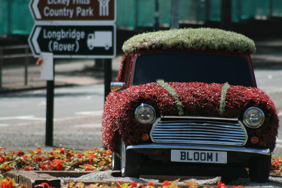 Goodbye to Bloom 1 as vandals force nursery staff to remove floral ...