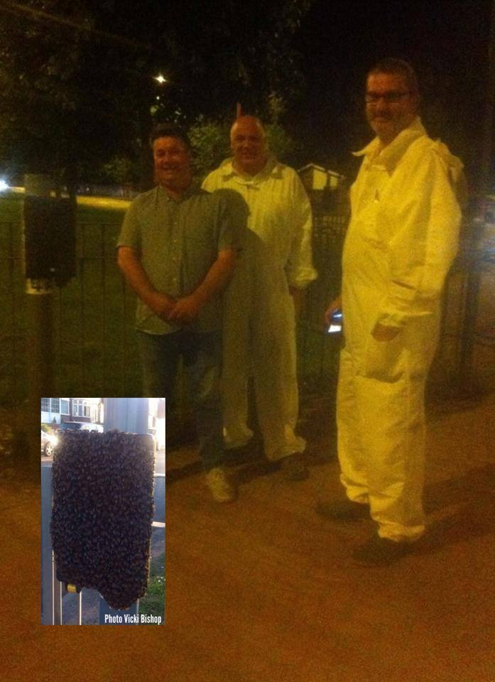 Bee rescuers Ian Baker and Colin Hawkings with Cllr Andy Cartwright and the bees!